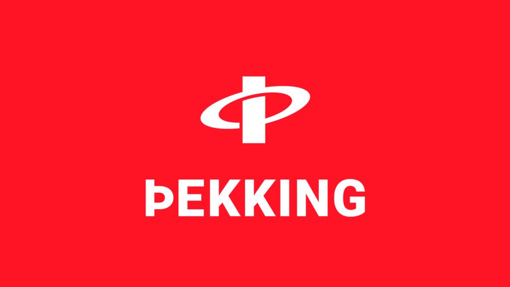 Þekking - lógó